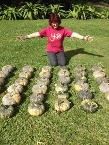 Relationship Insights Growing food organically - in this case 44 pumpkins from one vine in 2013 - has always been important to me. Not just the nutritional value, but having my hands in the soil, tending to compost and noting the weather and seasons.