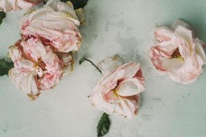 These dying pink roses represent a couple who have stayed together through good times and bad, including the death of one of their children. They can say without a doubt that a happy ending depends on when you stop the story.
