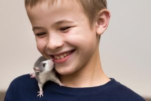 When you are a child, taking care of a pet is a serious responsibility. Happiness comes from responsibility.